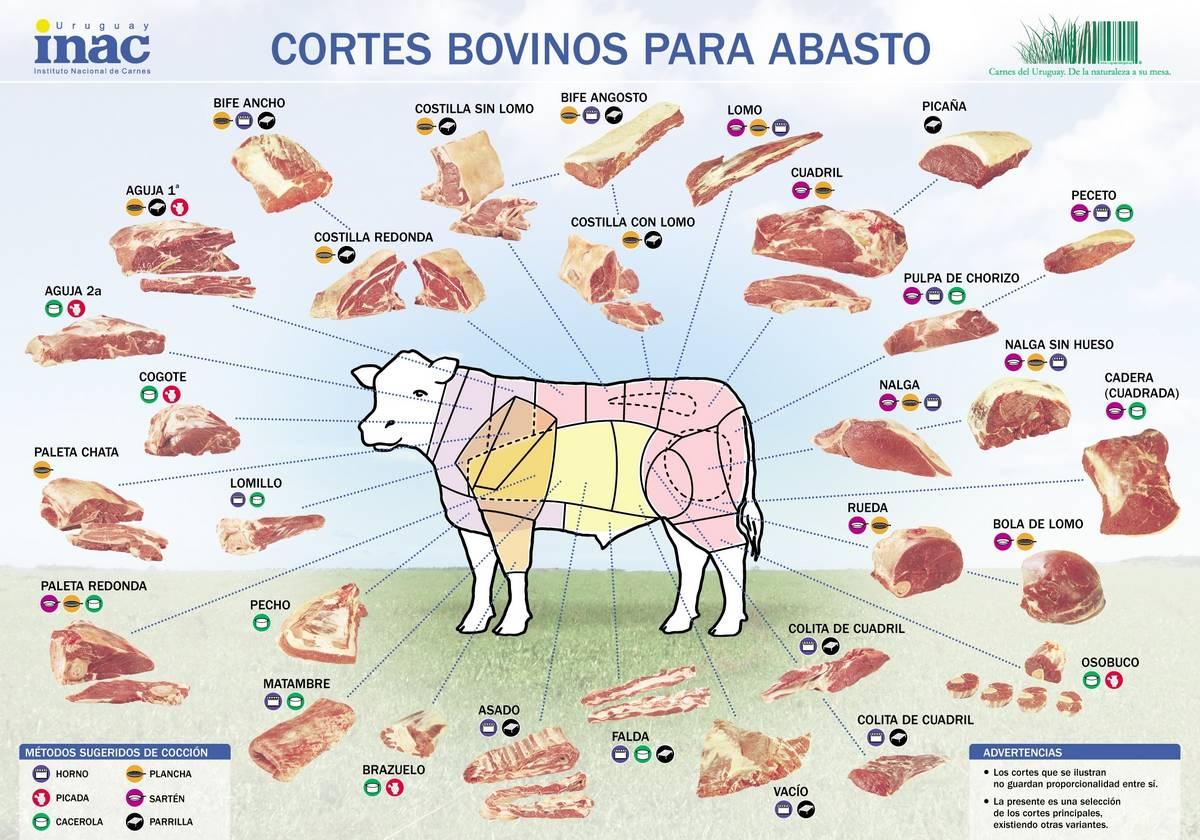 nombres-corte-carne-vacuno-argentina-chile-espana-estados-unidos-locosxlaparrilla